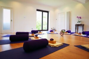 Yoga Tree Studio with mats and bolsters in a circle