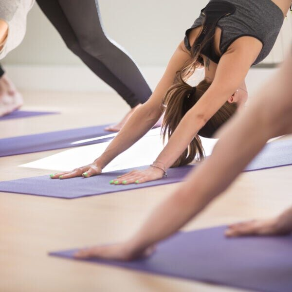 Group of young sporty people practicing yoga lesson, doing Downward facing dog exercise, adho mukha svanasana pose, working out, indoor, students training in club, studio close up. Well being concept
